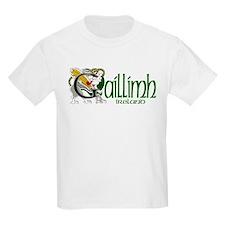 Galway Dragon (Gaelic) Kids T-Shirt