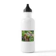 Ninja Kittens Water Bottle