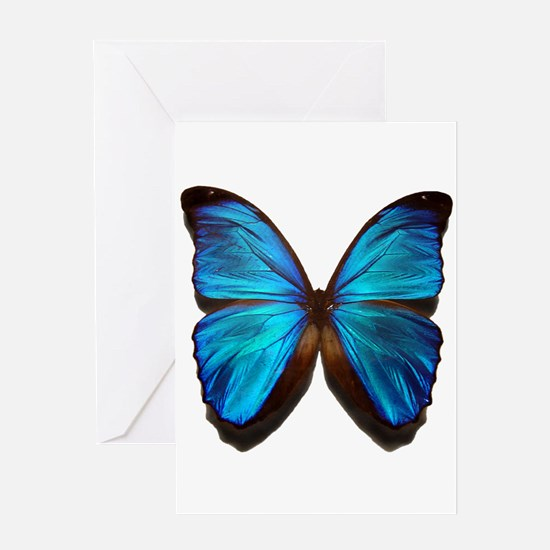 blue butterfly two Greeting Card