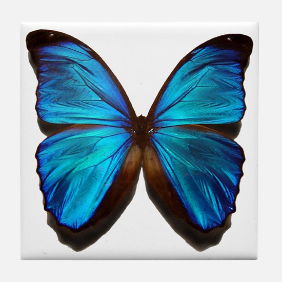blue butterfly two Tile Coaster