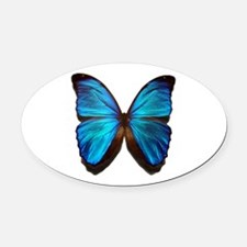 blue butterfly two Oval Car Magnet