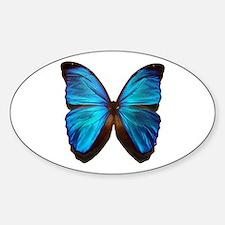 blue butterfly two Sticker (Oval)