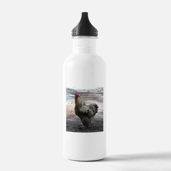 Chicken Water Bottle