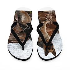 Willow Flip Flops