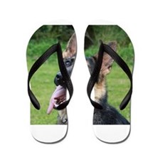 Maddi Flip Flops