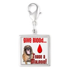 Give Blood, Tease a Malinois Silver Square Charm