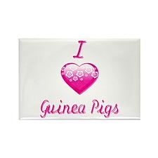 I Love/Heart Guinea Pigs Rectangle Magnet (10 pack