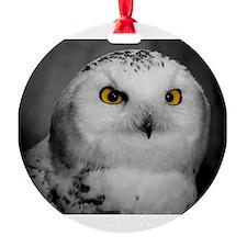 Cute Snowy owl Ornament