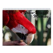 Green-Winged Macaw Wall Calendar