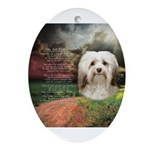 Why God Made Dogs - Havanese Ornament (Oval)