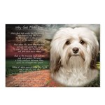 Why God Made Dogs - Havanese Postcards (Package of