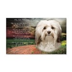 Why God Made Dogs - Havanese 20x12 Wall Decal
