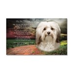 Why God Made Dogs - Havanese Car Magnet 20 x 12