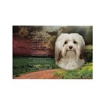 Why God Made Dogs - Havanese Rectangle Magnet (10