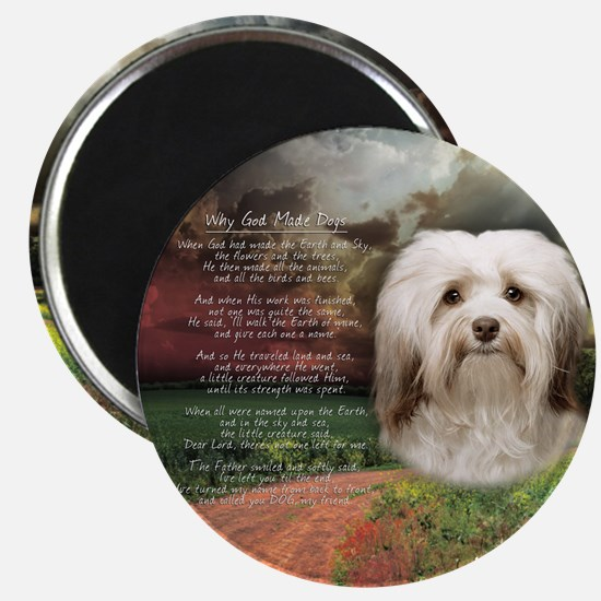 Why God Made Dogs - Havanese Magnet