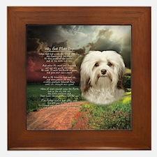 Why God Made Dogs - Havanese Framed Tile
