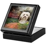 Why God Made Dogs - Havanese Keepsake Box