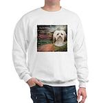 Why God Made Dogs - Havanese Sweatshirt