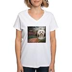 Why God Made Dogs - Havanese Women's V-Neck T-Shir