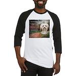 Why God Made Dogs - Havanese Baseball Jersey