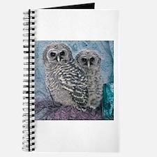 Unique Barred owl Journal