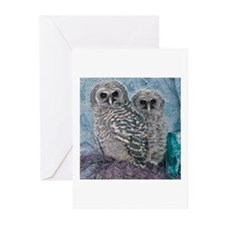 Baby Barred Owls Greeting Cards