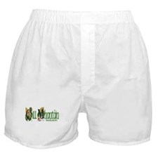 Wicklow Dragon (Gaelic) Boxer Shorts