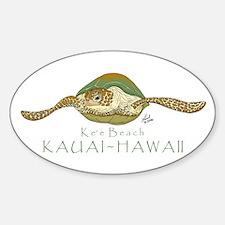 Sea Turtle Oval Decal