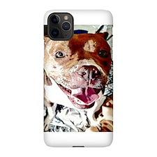 Kumbaya Guinea Pig iPhone 5 Case
