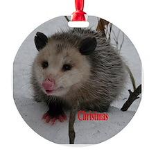 Snow Possum Ornament
