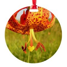 Tiger Lily Heart Ornament