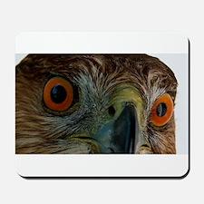 Raptor Eyes Mousepad