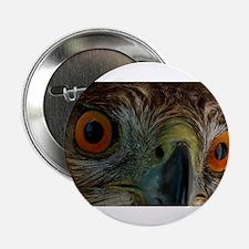 """Raptor Eyes 2.25"""" Button"""