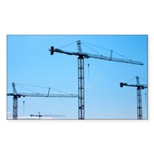 Cranes Decal