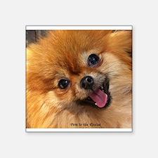 "Happy Pomeranian Square Sticker 3"" x 3"""