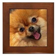Happy Pomeranian Framed Tile
