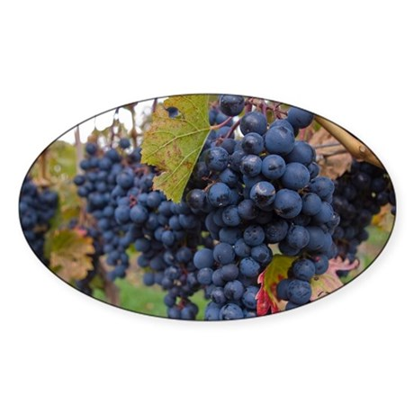 Grapes on the Vine Sticker (Oval)