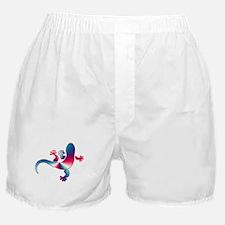 Cool Gecko 4 Boxer Shorts