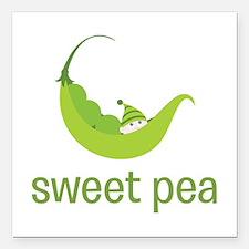 "Sweet Pea Square Car Magnet 3"" x 3"""