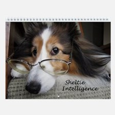 Sheltie Intelligence