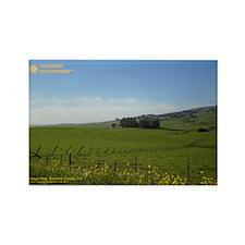 California Fields Sunspeed Rectangle Magnet