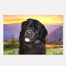 Newfoundland Meadow Postcards (Package of 8)