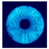Ophthalmology Wrapped Canvas Art