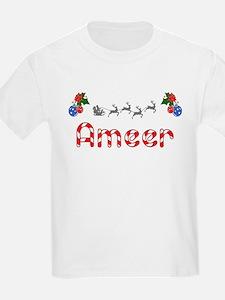 Ameer, Christmas T-Shirt