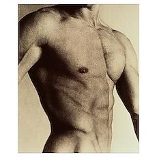 Nude man's torso Poster