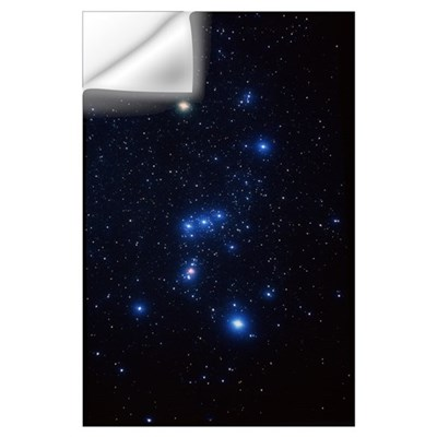 Orion constellation Wall Decal