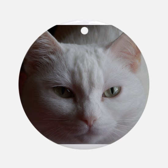 Sugar Kitty Collection 2 Ornament (Round)