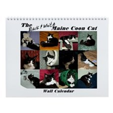 B&W Maine Coon Cat Wall Calendar