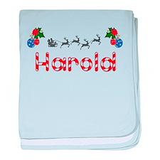 Harold, Christmas baby blanket
