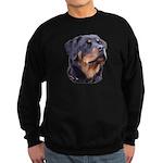 bitchhead2glow.png Sweatshirt (dark)